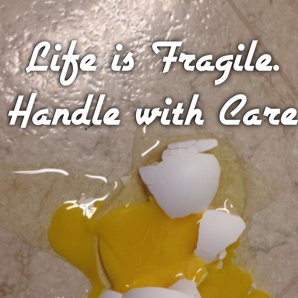 broken egg life is fragile