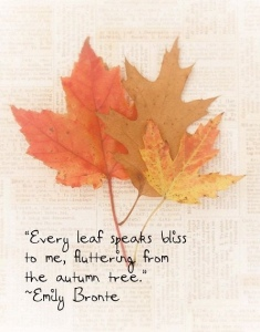 Autumn Leaves Emily Bronte quote