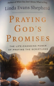 Praying God's Promises book cover